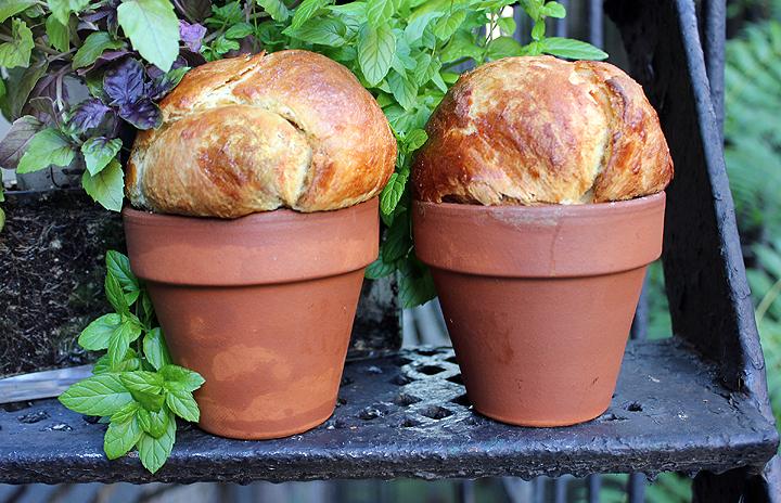 Flower Pot Brioche